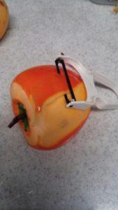 干し柿の作り方、皮剥き器を使った柿の皮の剥き方の説明