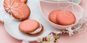 春限定の桜の風味を楽しめる、アンリシャルパンティエの「クレーム・ビスキュイ」さくら