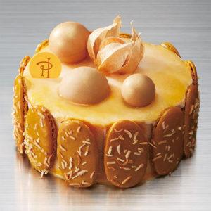 高島屋限定、ピエールエルメのクリスマスケーキ「アントルメグラッセ・マホガニー」